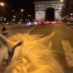 Balade en cheval paris