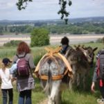 Balade a cheval angers