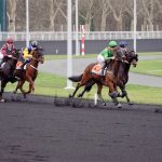 Course a vincennes