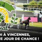 Vincennes turf