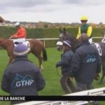 Les courses hippique en direct